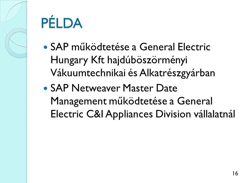 PÉLDA SAP működtetése a General Electric Hungary Kft hajdúböszörményi Vákuumtechnikai és Alkatrészgyárban.