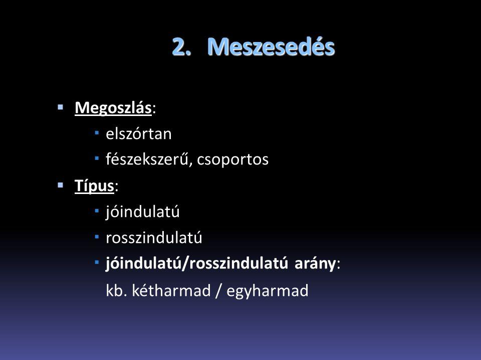 2. Meszesedés Megoszlás: elszórtan fészekszerű, csoportos Típus: