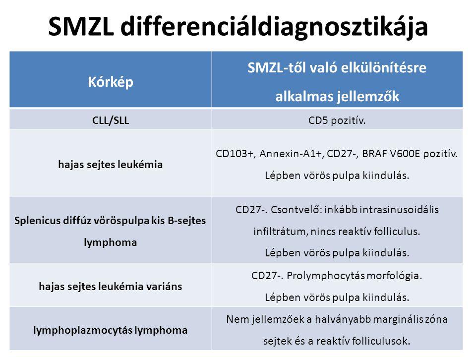 SMZL differenciáldiagnosztikája