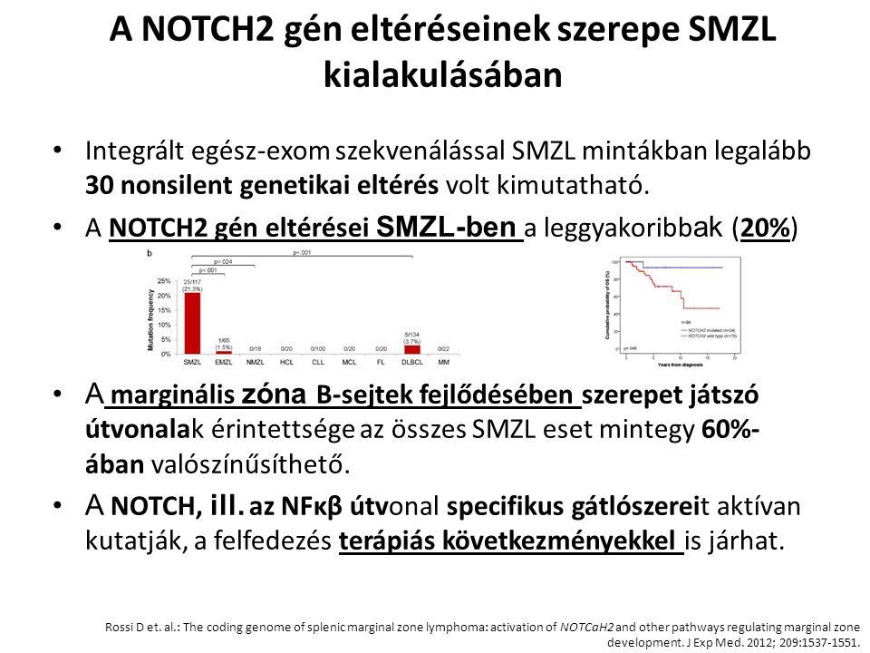 A NOTCH2 gén eltéréseinek szerepe SMZL kialakulásában