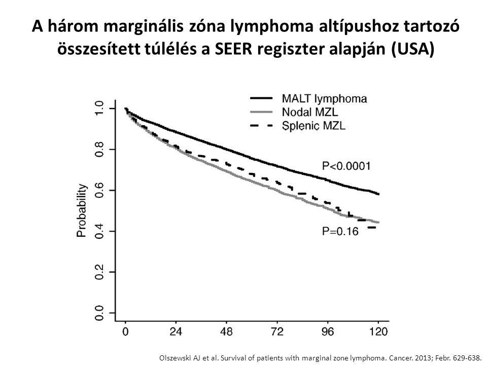 A három marginális zóna lymphoma altípushoz tartozó összesített túlélés a SEER regiszter alapján (USA)