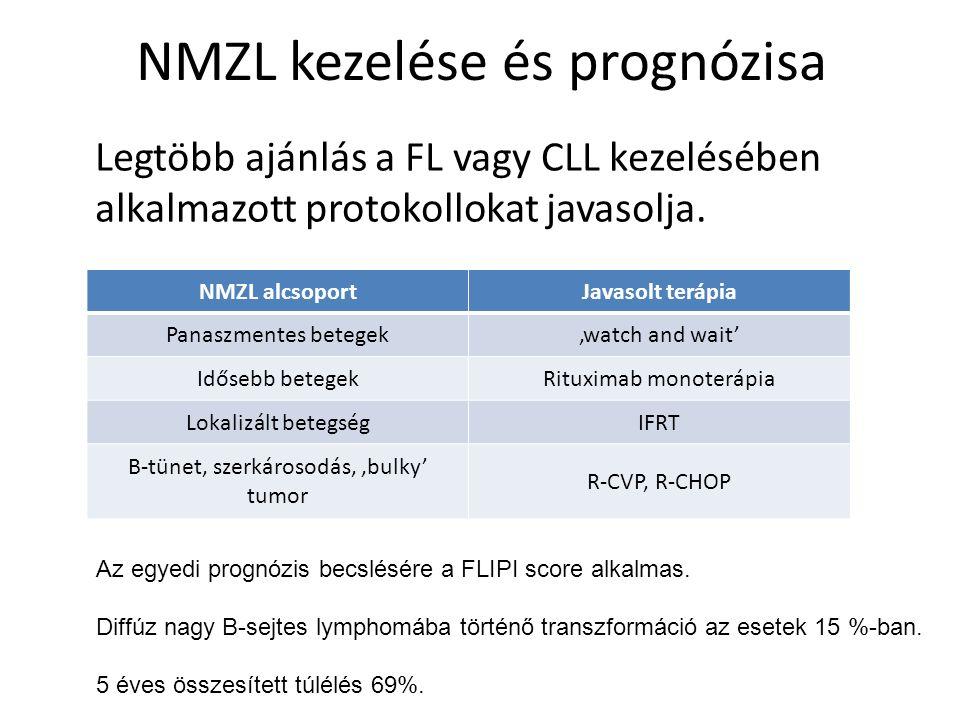 NMZL kezelése és prognózisa