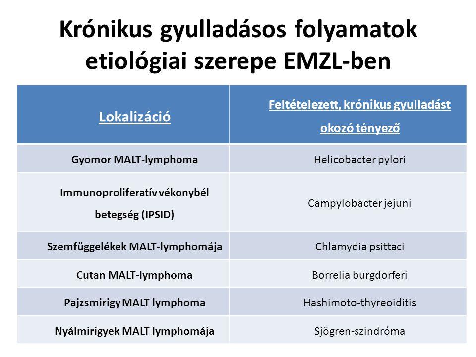 Krónikus gyulladásos folyamatok etiológiai szerepe EMZL-ben