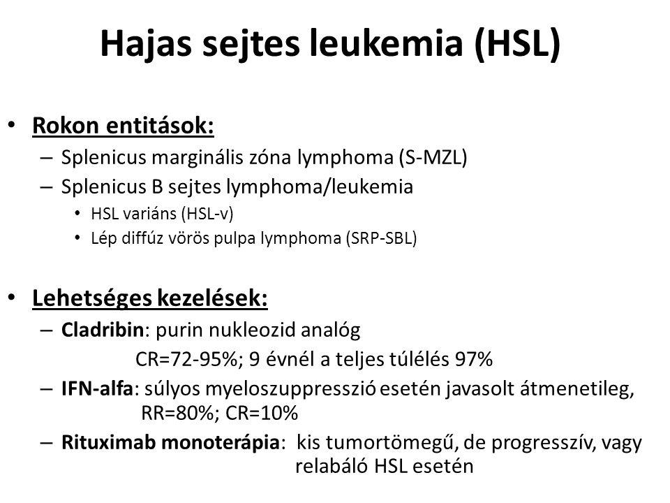 Hajas sejtes leukemia (HSL)