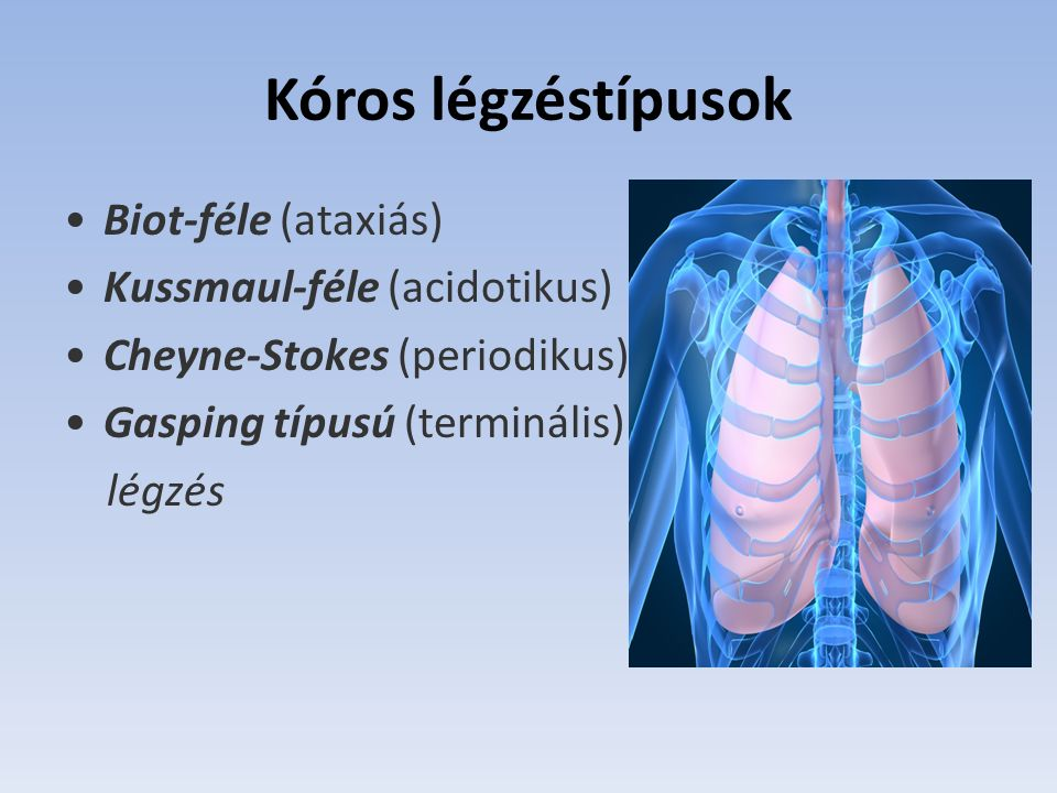 Kóros légzéstípusok Biot-féle (ataxiás) Kussmaul-féle (acidotikus)