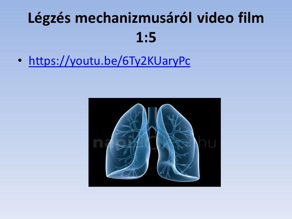 Légzés mechanizmusáról video film 1:5