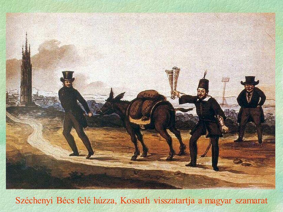 Széchenyi Bécs felé húzza, Kossuth visszatartja a magyar szamarat