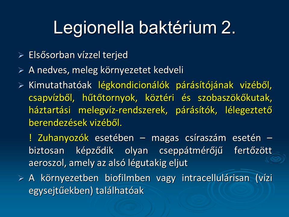 Legionella baktérium 2. Elsősorban vízzel terjed