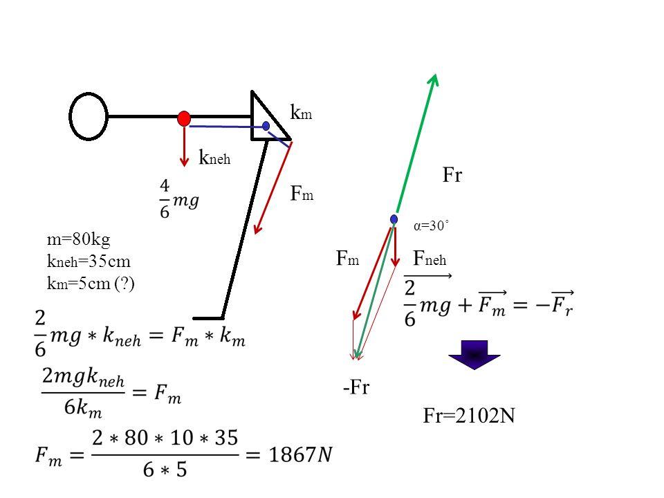 km kneh Fr Fm α=30˚ m=80kg kneh=35cm km=5cm ( ) Fm Fneh -Fr Fr=2102N