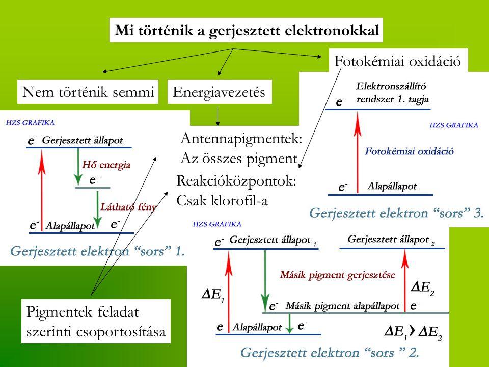 Mi történik a gerjesztett elektronokkal