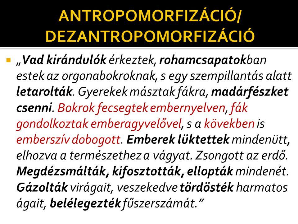 ANTROPOMORFIZÁCIÓ/ DEZANTROPOMORFIZÁCIÓ