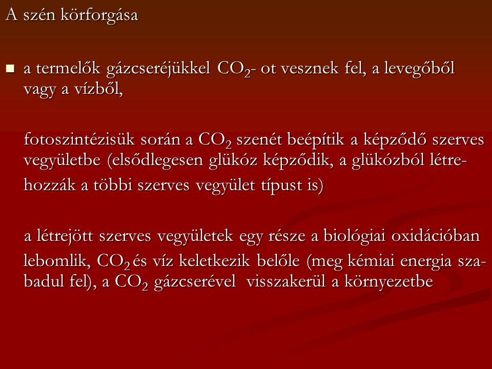 A szén körforgása a termelők gázcseréjükkel CO2- ot vesznek fel, a levegőből vagy a vízből,