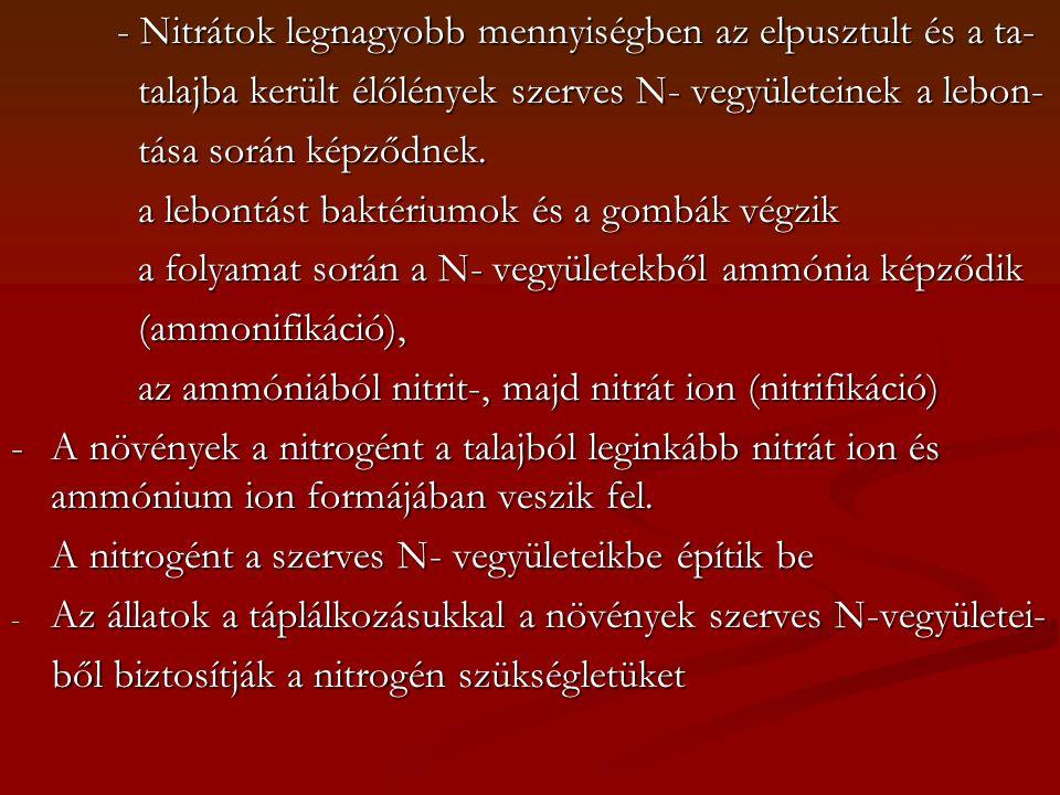 - Nitrátok legnagyobb mennyiségben az elpusztult és a ta-