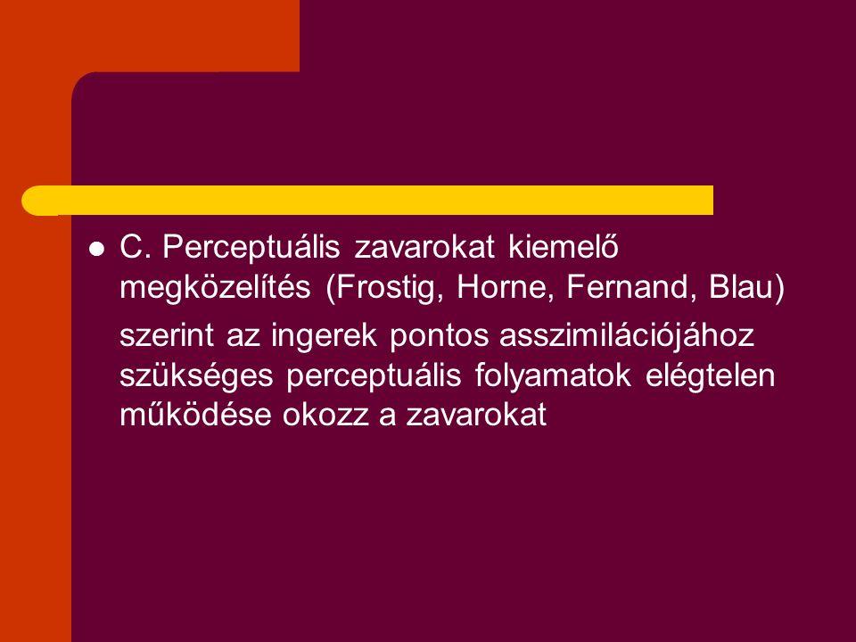C. Perceptuális zavarokat kiemelő megközelítés (Frostig, Horne, Fernand, Blau)