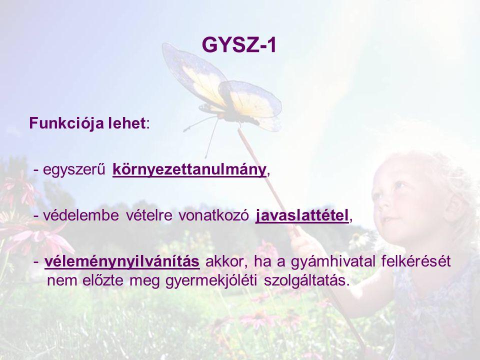 GYSZ-1 Funkciója lehet: - egyszerű környezettanulmány,