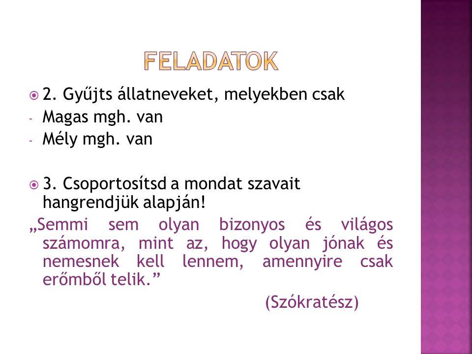 FELADATOK 2. Gyűjts állatneveket, melyekben csak Magas mgh. van