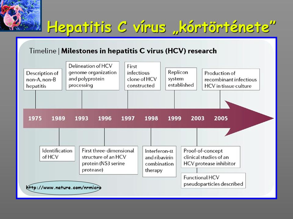 """Hepatitis C vírus """"kórtörténete"""