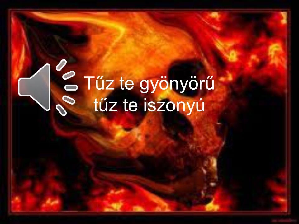 Tűz te gyönyörű tűz te iszonyú