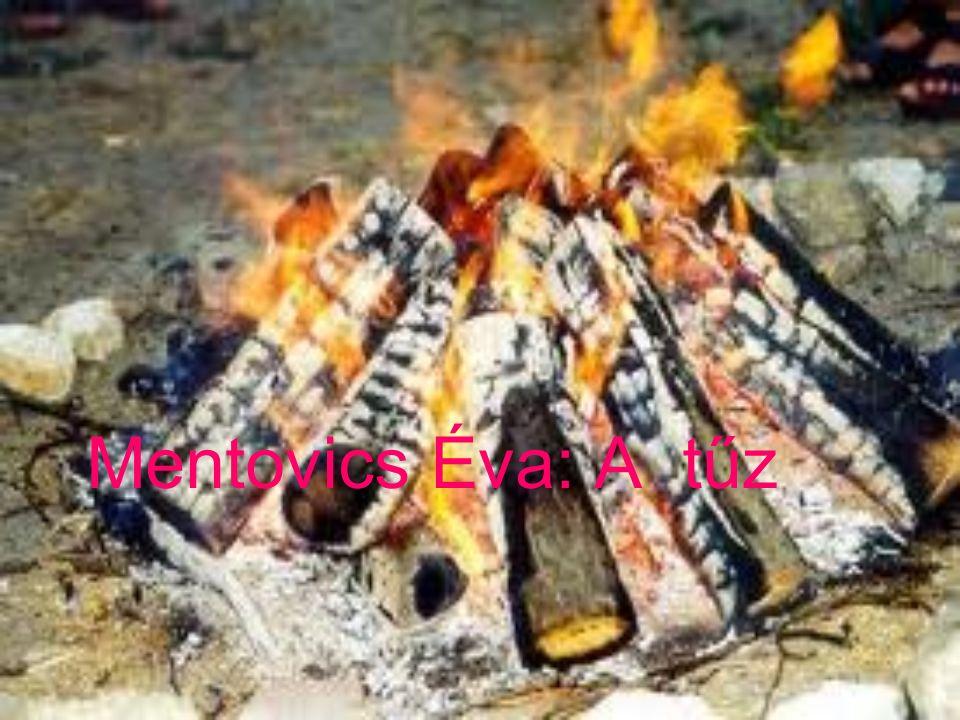 Mentovics Éva: A tűz