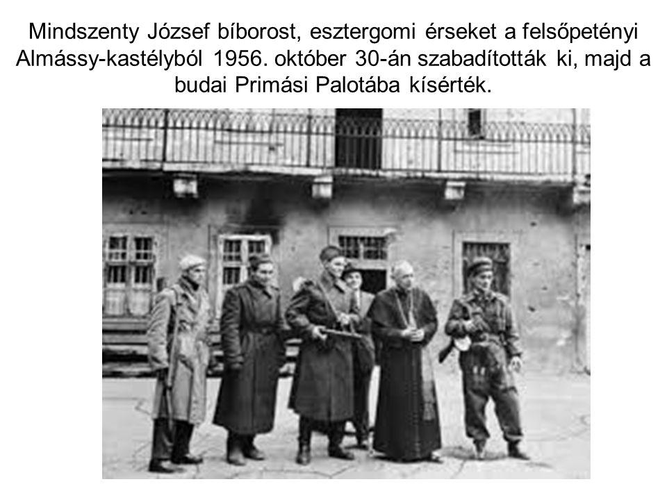 Mindszenty József bíborost, esztergomi érseket a felsőpetényi Almássy-kastélyból 1956.