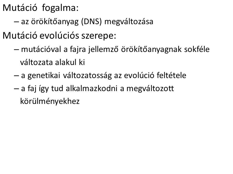 Mutáció evolúciós szerepe: