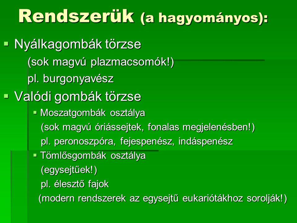 Rendszerük (a hagyományos):