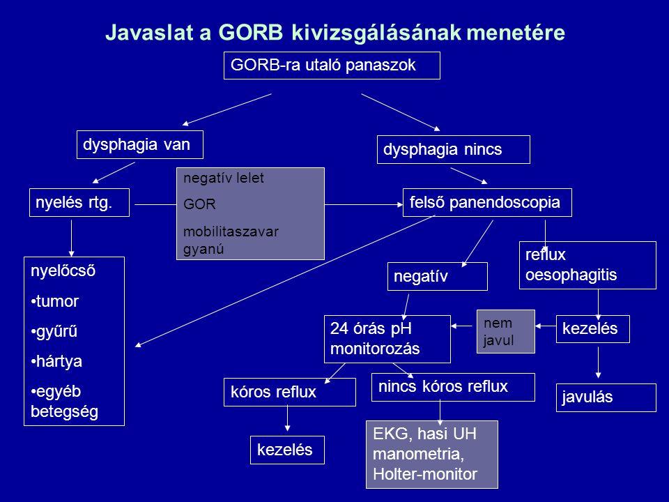 Javaslat a GORB kivizsgálásának menetére