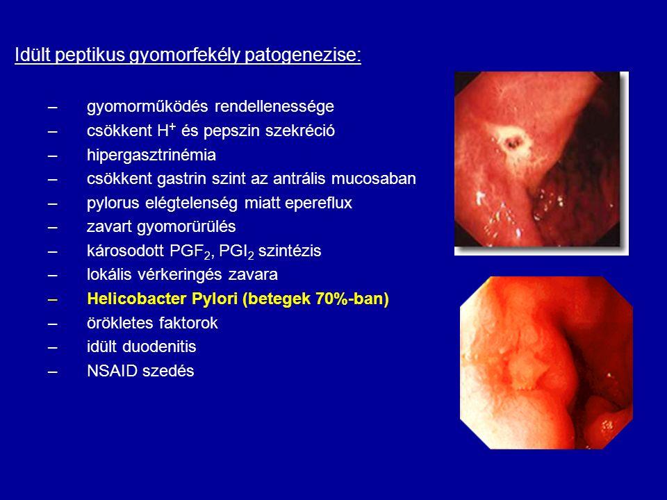 Idült peptikus gyomorfekély patogenezise: