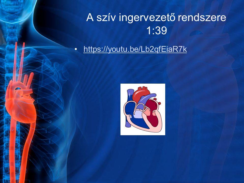A szív ingervezető rendszere 1:39