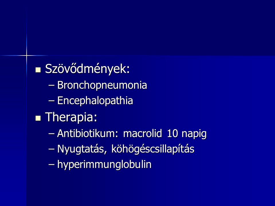 Szövődmények: Therapia: Bronchopneumonia Encephalopathia