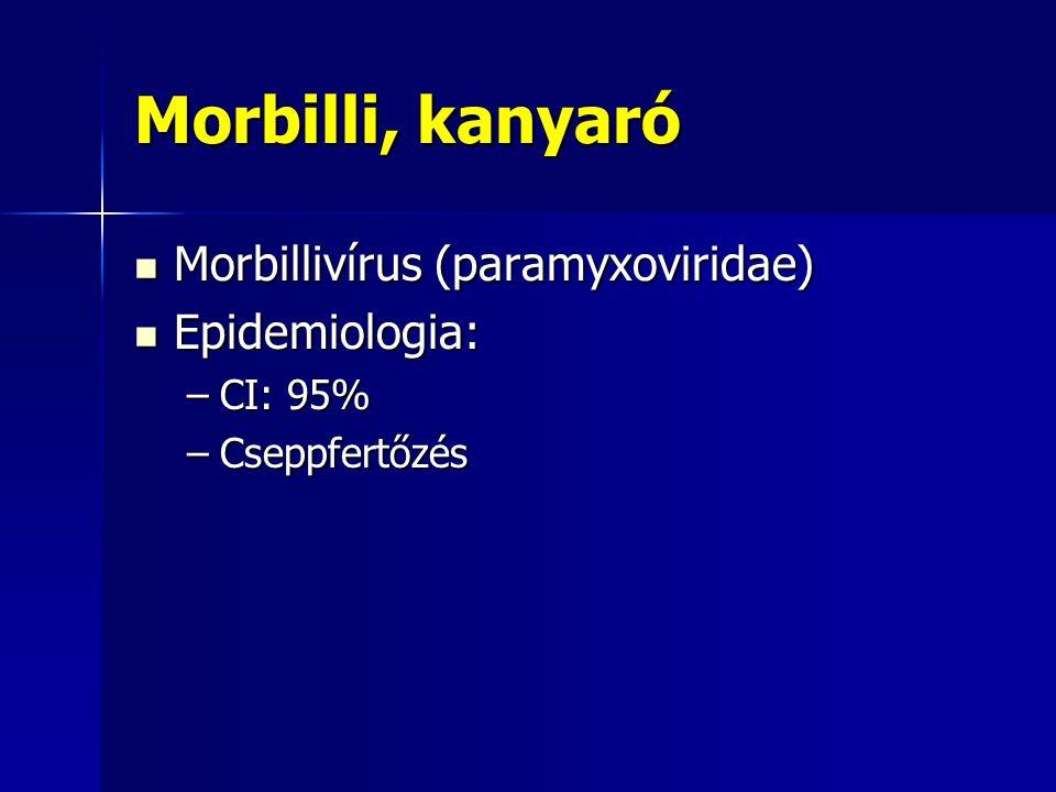 Morbilli, kanyaró Morbillivírus (paramyxoviridae) Epidemiologia:
