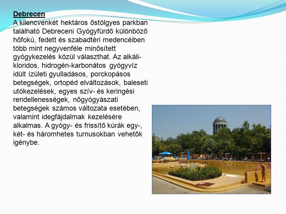Debrecen A kilencvenkét hektáros őstölgyes parkban található Debreceni Gyógyfürdő különböző hőfokú, fedett és szabadtéri medencéiben több mint negyvenféle minősített gyógykezelés közül választhat.
