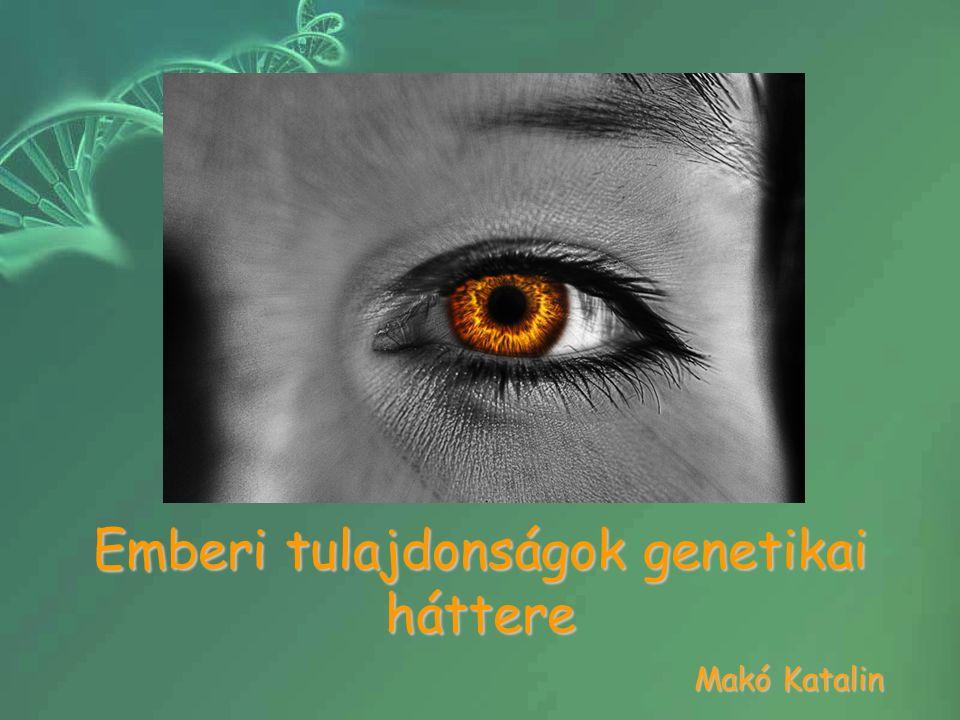 Emberi tulajdonságok genetikai háttere