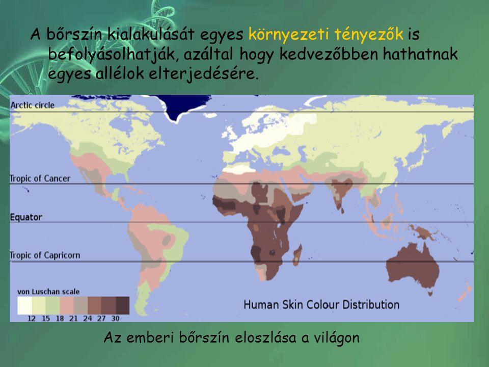 A bőrszín kialakulását egyes környezeti tényezők is befolyásolhatják, azáltal hogy kedvezőbben hathatnak egyes allélok elterjedésére.