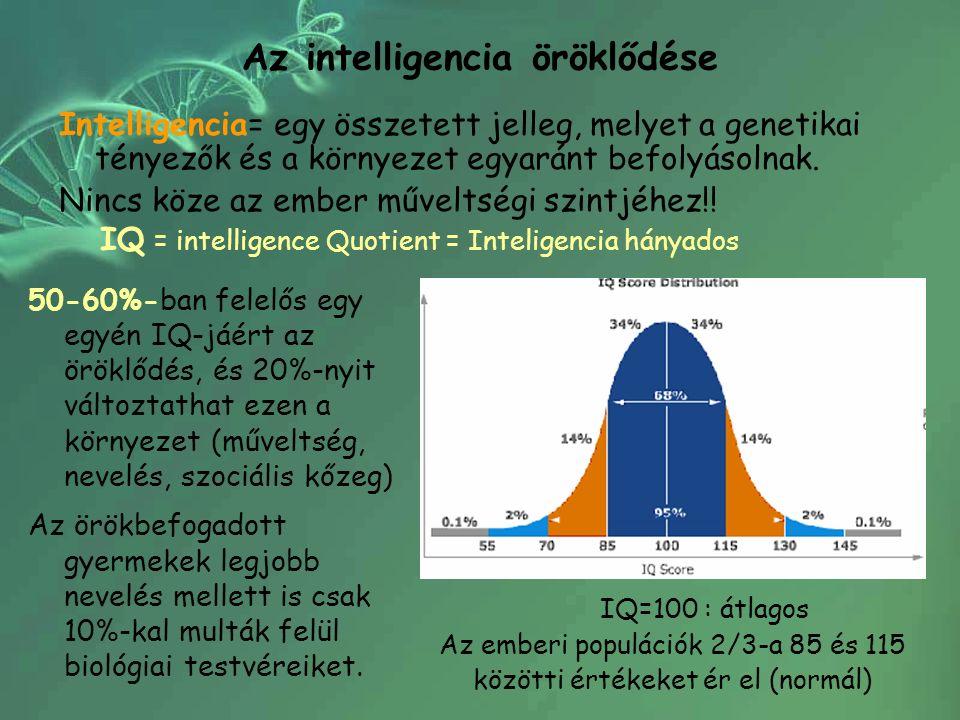 Az intelligencia öröklődése