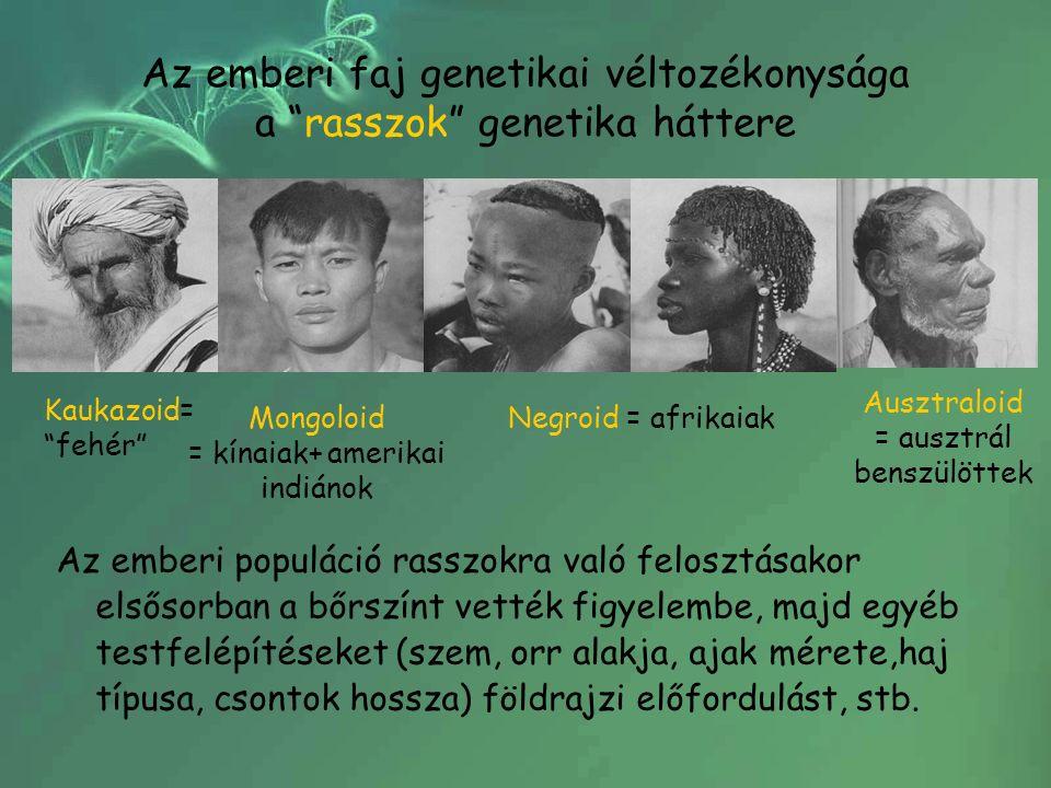 Az emberi faj genetikai véltozékonysága a rasszok genetika háttere