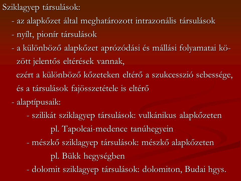 Sziklagyep társulások: