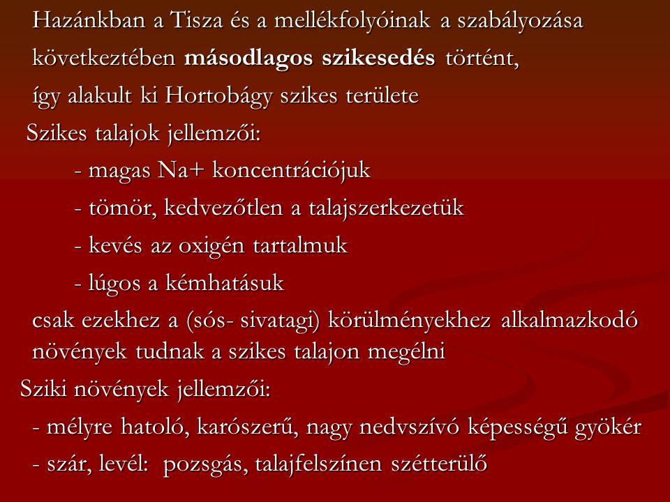 Hazánkban a Tisza és a mellékfolyóinak a szabályozása