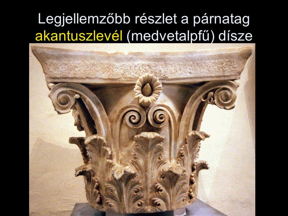 Legjellemzőbb részlet a párnatag akantuszlevél (medvetalpfű) dísze