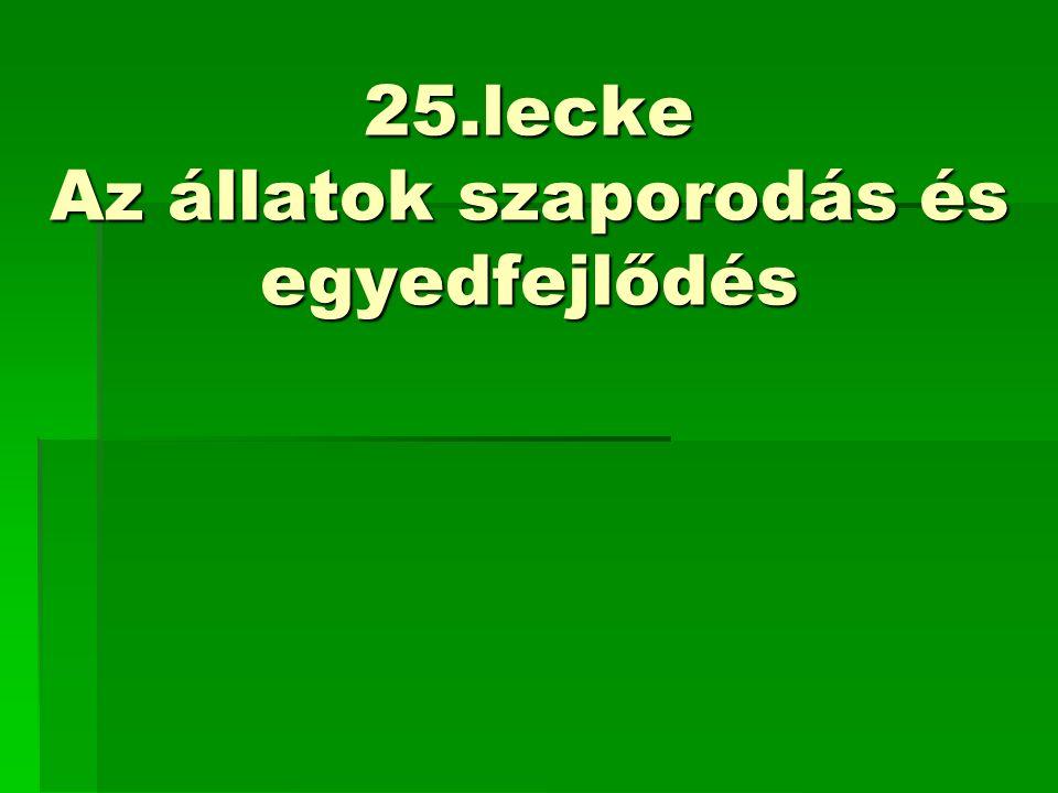 25.lecke Az állatok szaporodás és egyedfejlődés