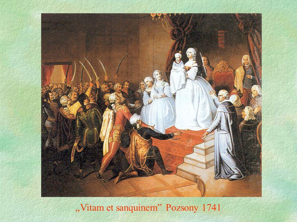 """""""Vitam et sanquinem Pozsony 1741"""
