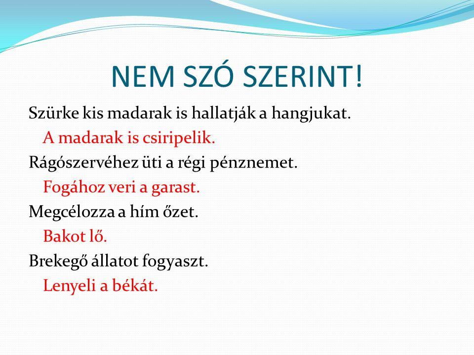 NEM SZÓ SZERINT!