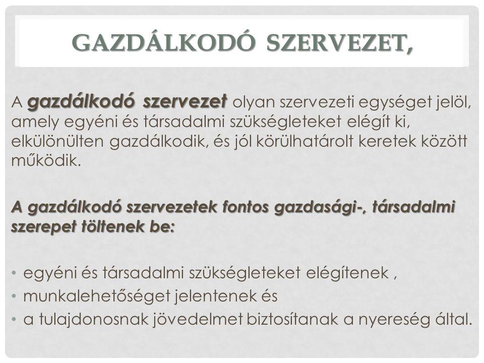 GAZDÁLKODÓ SZERVEZET,