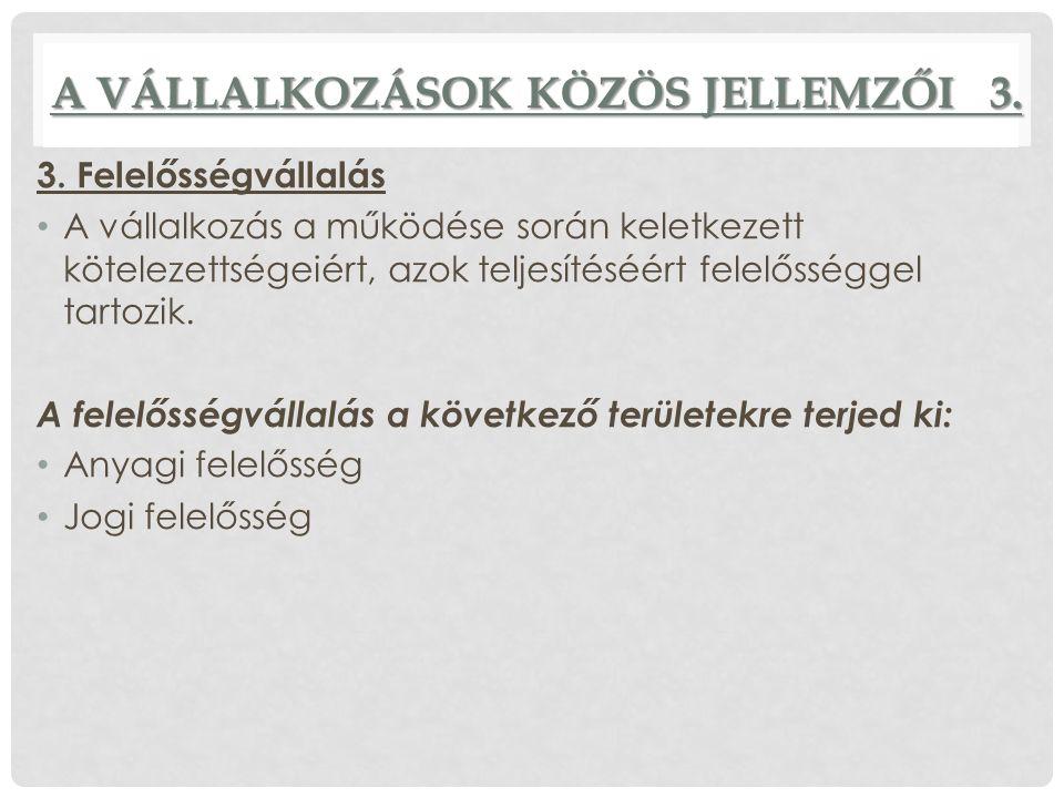 A VÁLLALKOZÁSOK KÖZÖS JELLEMZŐI 3.