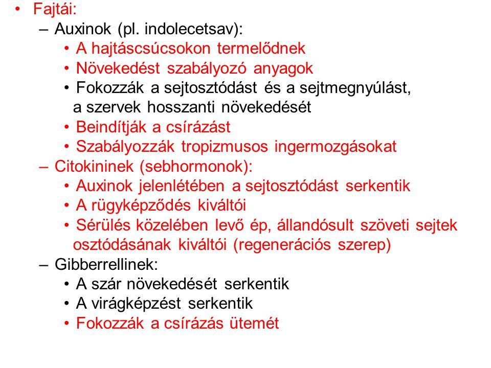 Fajtái: Auxinok (pl. indolecetsav): A hajtáscsúcsokon termelődnek. Növekedést szabályozó anyagok.