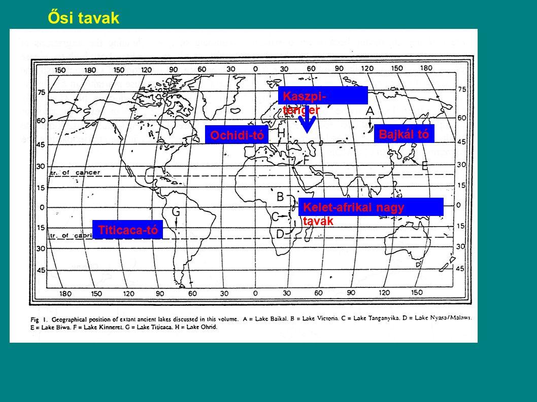 Ősi tavak Kaszpi-tenger Ochidi-tó Bajkál tó Kelet-afrikai nagy tavak