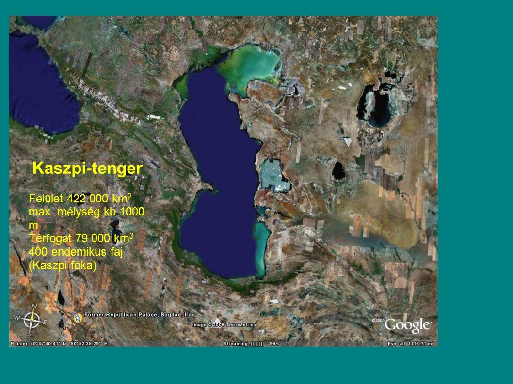 Kaszpi-tenger Felület 422 000 km2 max. mélység kb 1000 m