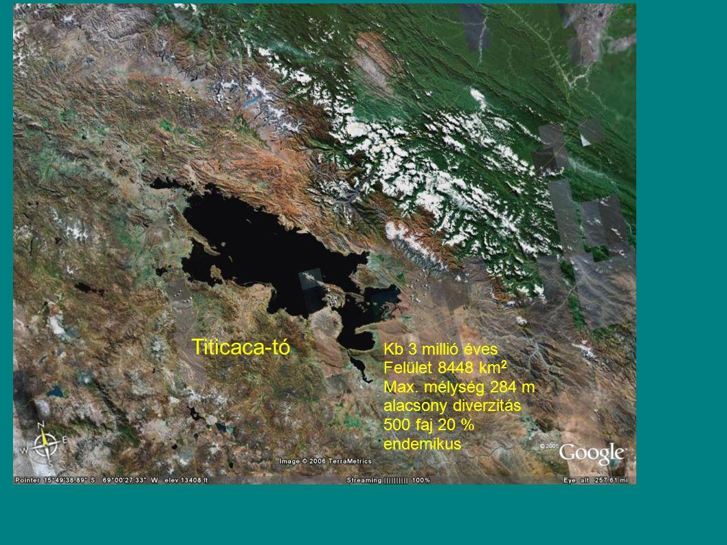 Titicaca-tó Kb 3 millió éves Felület 8448 km2 Max. mélység 284 m