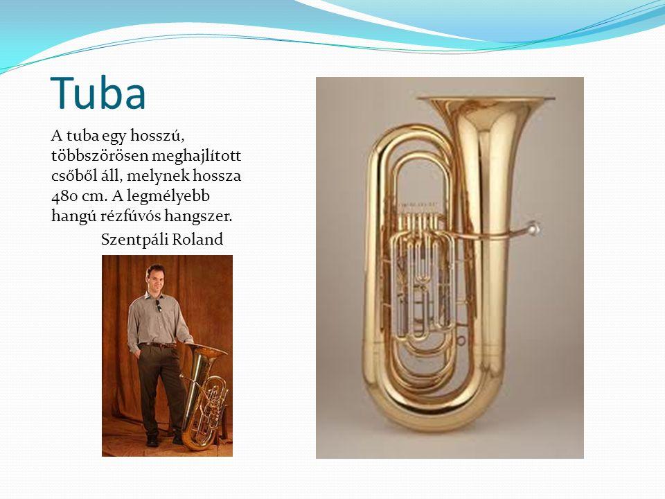 Tuba A tuba egy hosszú, többszörösen meghajlított csőből áll, melynek hossza 480 cm. A legmélyebb hangú rézfúvós hangszer.