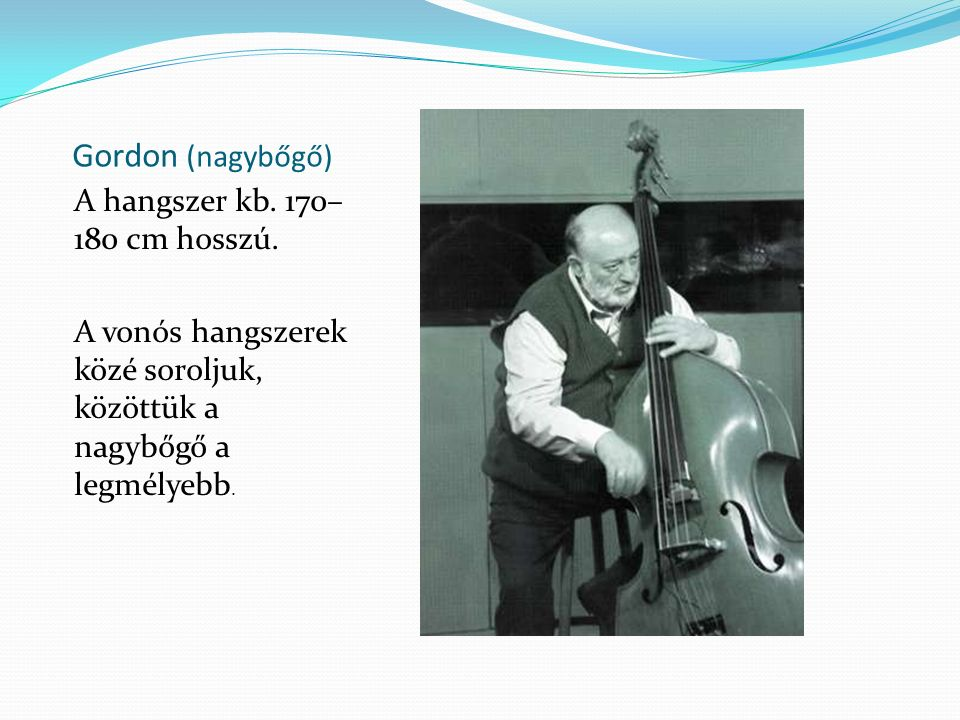 Gordon (nagybőgő) A hangszer kb. 170–180 cm hosszú.